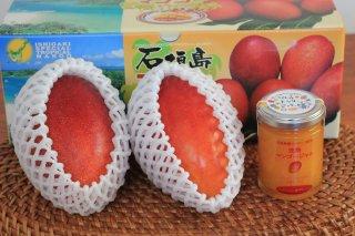 マンゴーとジャムセット ワケありマンゴー約700g2玉 + オーガニック マンゴージャム120g1瓶 全国送料無料!