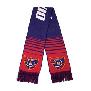<img class='new_mark_img1' src='https://img.shop-pro.jp/img/new/icons1.gif' style='border:none;display:inline;margin:0px;padding:0px;width:auto;' />Dime<br>DIME SCARF<br>BLUE & RED