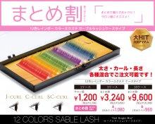 まとめ割 12色レインボー カラーエクステ セーブルラッシュケースタイプ