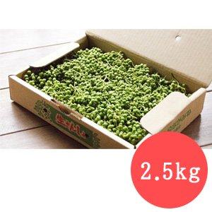 実山椒(生鮮) 2.5kg