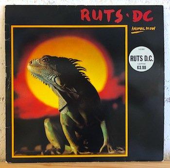 Ruts DC / Animal Now