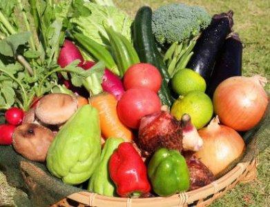 グラビトン野菜