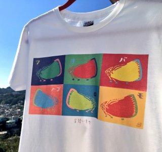 アオバハゴロモTシャツ 各種