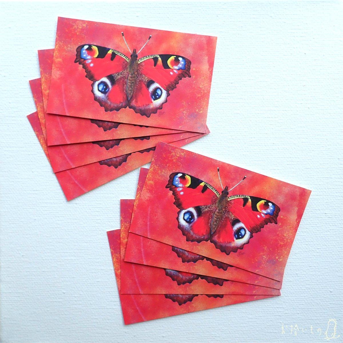 クジャクチョウ メッセージカード