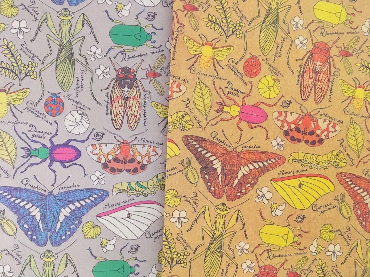 虫夢虫バグカラー 包み紙