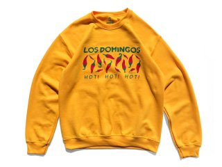 SUNDAYS BEST [サンデイズ ベスト] NEW MEXICO ON MY MIND CREW NECK SWEAT/GOLD