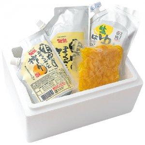 【冷凍】生シリーズギフト 夏キャンペーン