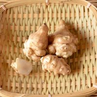 菊芋 100g