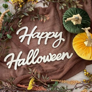 <img class='new_mark_img1' src='https://img.shop-pro.jp/img/new/icons16.gif' style='border:none;display:inline;margin:0px;padding:0px;width:auto;' /><BR>Happy Halloween  ウッドレターサイン ハロウィンデコレーション