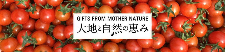 有機野菜・有機栽培の通販・販売は大地と自然の恵み