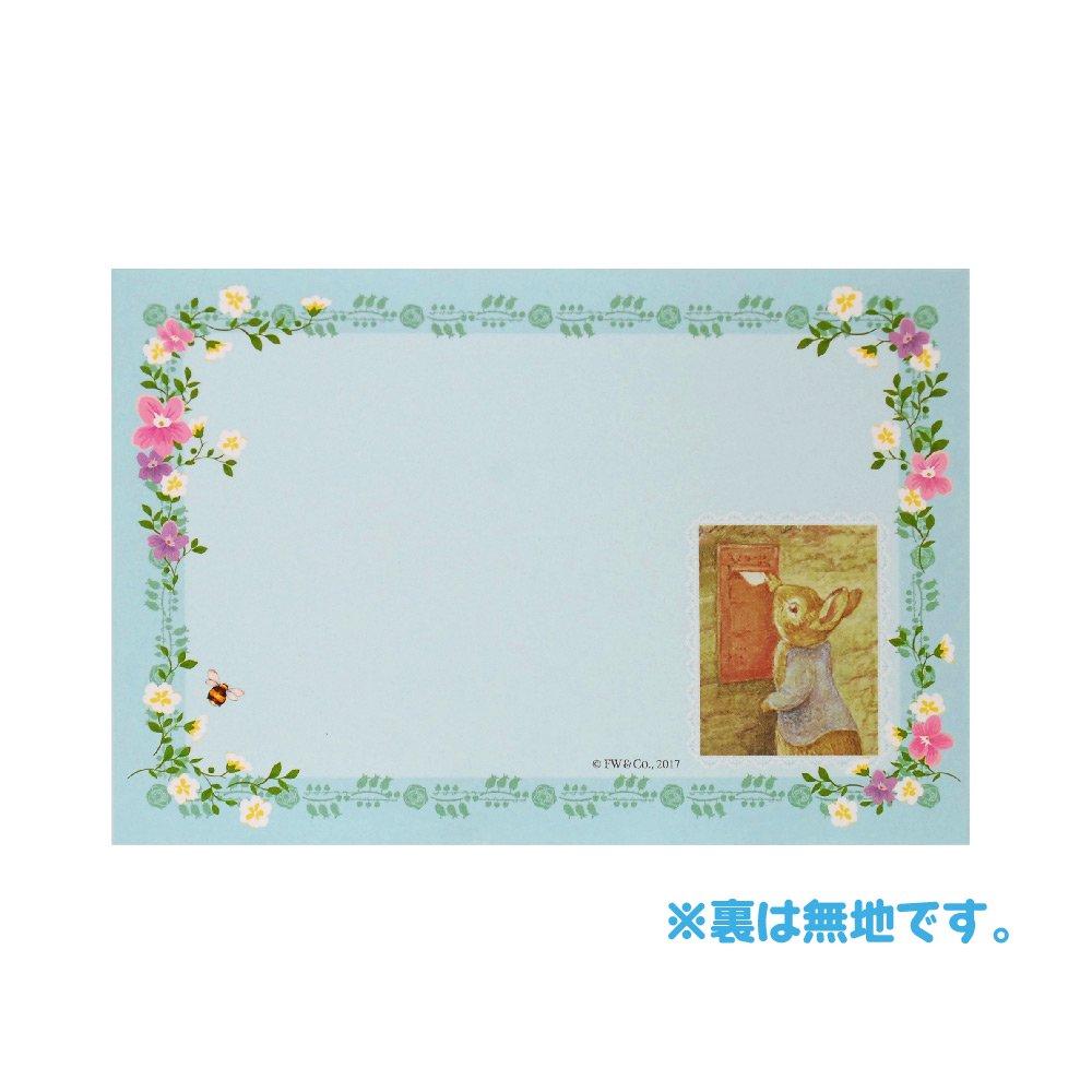 ピングー ポケットパックレター(レース) AD050-36 PR