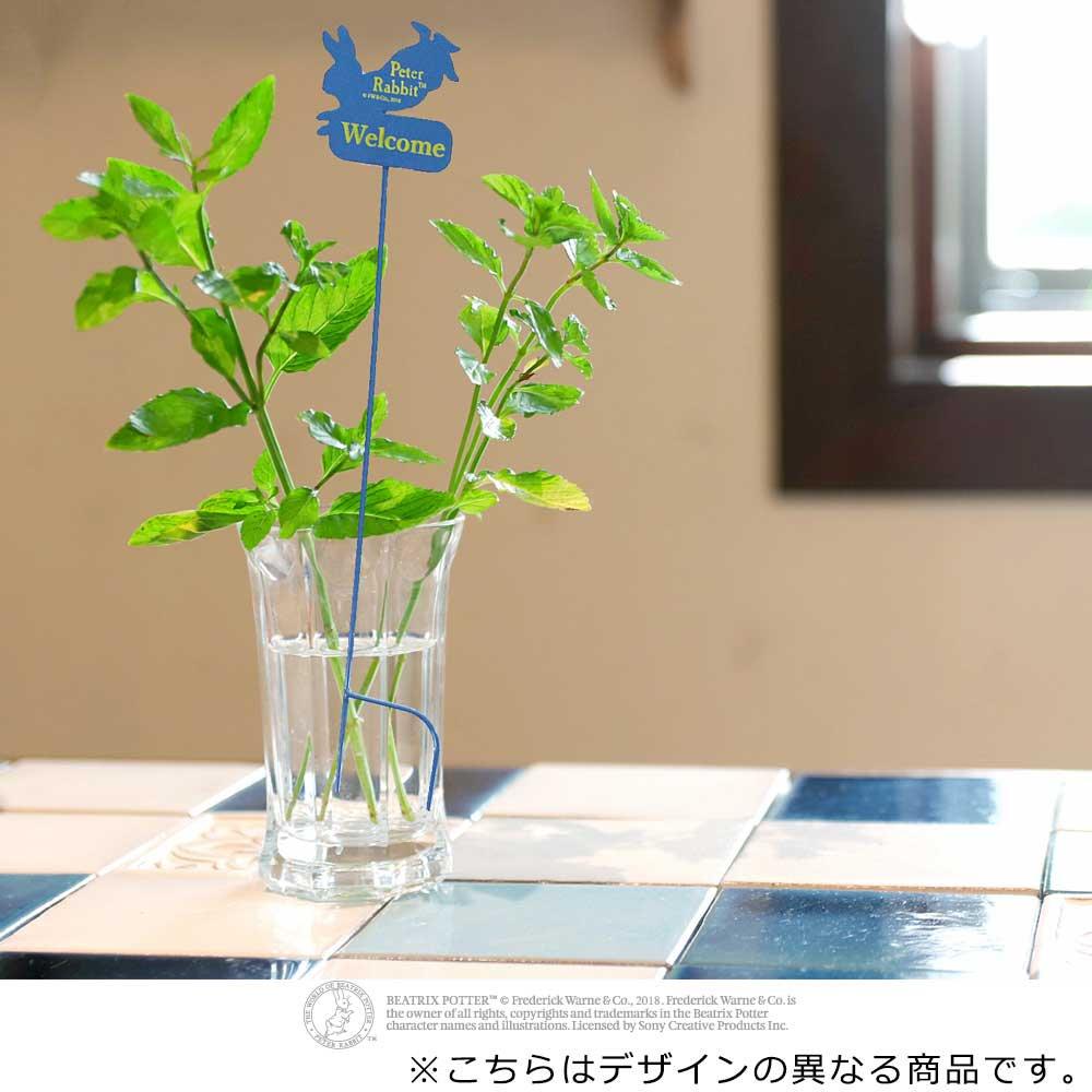 ピングー ガーデンピック(ピーター3)ブルー 8250015 PR
