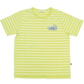グレープボーダーTシャツ(ライトグリーン)L 392164-61 PR