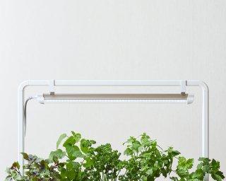 植物用 フルスペクトル LED ライト ( ブラック / ホワイト ) ライトスタンド 付