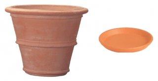 【 専用受皿 付き 】 ツリーポット 48 cm / テラコッタ / 植木 鉢 プランター / 送料無料
