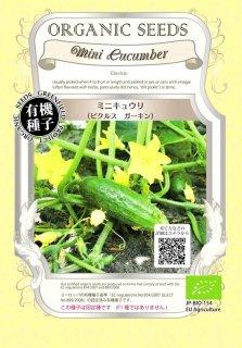 ミニ キュウリ / ピクルス ガーキン / 有機 種子 固定種 / グリーンフィールド / 果菜 [小袋]