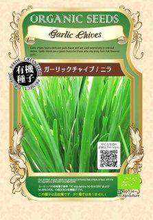 ガーリックチャイブ / ニラ / 有機 種子 固定種 / グリーンフィールド / ハーブ [小袋]
