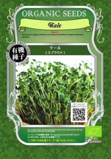 ケール / 有機 種子 固定種 / グリーンフィールド / スプラウト [小袋]