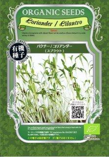 コリアンダー / パクチー / 有機 種子 固定種 / グリーンフィールド / スプラウト [中袋]