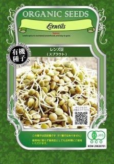 有機 レンズ 豆 / 有機 種子 固定種 / グリーンフィールド / スプラウト [中袋]