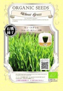 ウィートグラス / 小麦 / スムージー & ジュース 用 / 有機 種子 固定種 / グリーンフィールド / 葉菜 [中袋]
