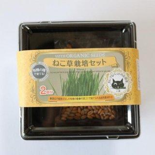 ねこ 草 栽培 キット < 種子 二袋 付 > / 有機 種子 固定種 / グリーンフィールド / ペット用