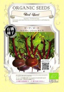 ビーツ / ビート / エジプト / フラット ラウンド / 有機 種子 固定種 / グリーンフィールド / 根菜 [大袋]