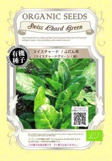 スイス チャード / ふだん草 / 緑 / 有機 種子 固定種 / グリーンフィールド / 葉菜 [大袋]