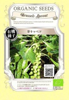 芽 キャベツ / 有機 種子 固定種 / グリーンフィールド / ブラシカ [大袋]