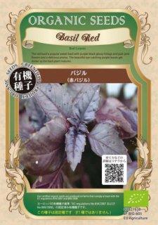 赤 バジル / 有機 種子 固定種 / グリーンフィールド / ハーブ [大袋]