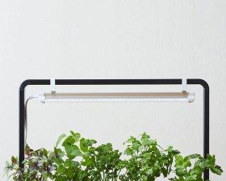 植物用 フルスペクトル LED ライト / ブラック / ライトスタンド 付