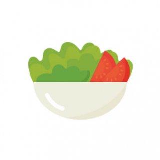 生サラダ セット / ハーブ  / テラコッタ 鉢 プランター / 鉢受皿 付