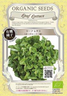 リーフ レタス / オークリーフ / 緑 / 有機 種子 固定種 / グリーンフィールド / 葉菜 [小袋]