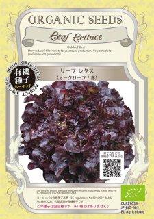 リーフレタス / オークリーフ / 赤 / 有機 種子 固定種 / グリーンフィールド / 葉菜 [小袋]