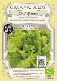 リーフレタス / ブラック シーデッド シンプソン 緑 / 有機 種子 固定種 / グリーンフィールド / 葉菜 [小袋]