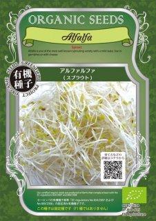 アルファルファ / 有機 種子 固定種 / グリーンフィールド / スプラウト [小袋]