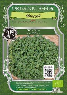 ブロッコリー / 有機 種子 固定種 / グリーンフィールド / スプラウト [小袋]