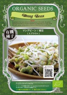 マングビーン / 緑豆 / 有機 種子 固定種 / グリーンフィールド / スプラウト [小袋]