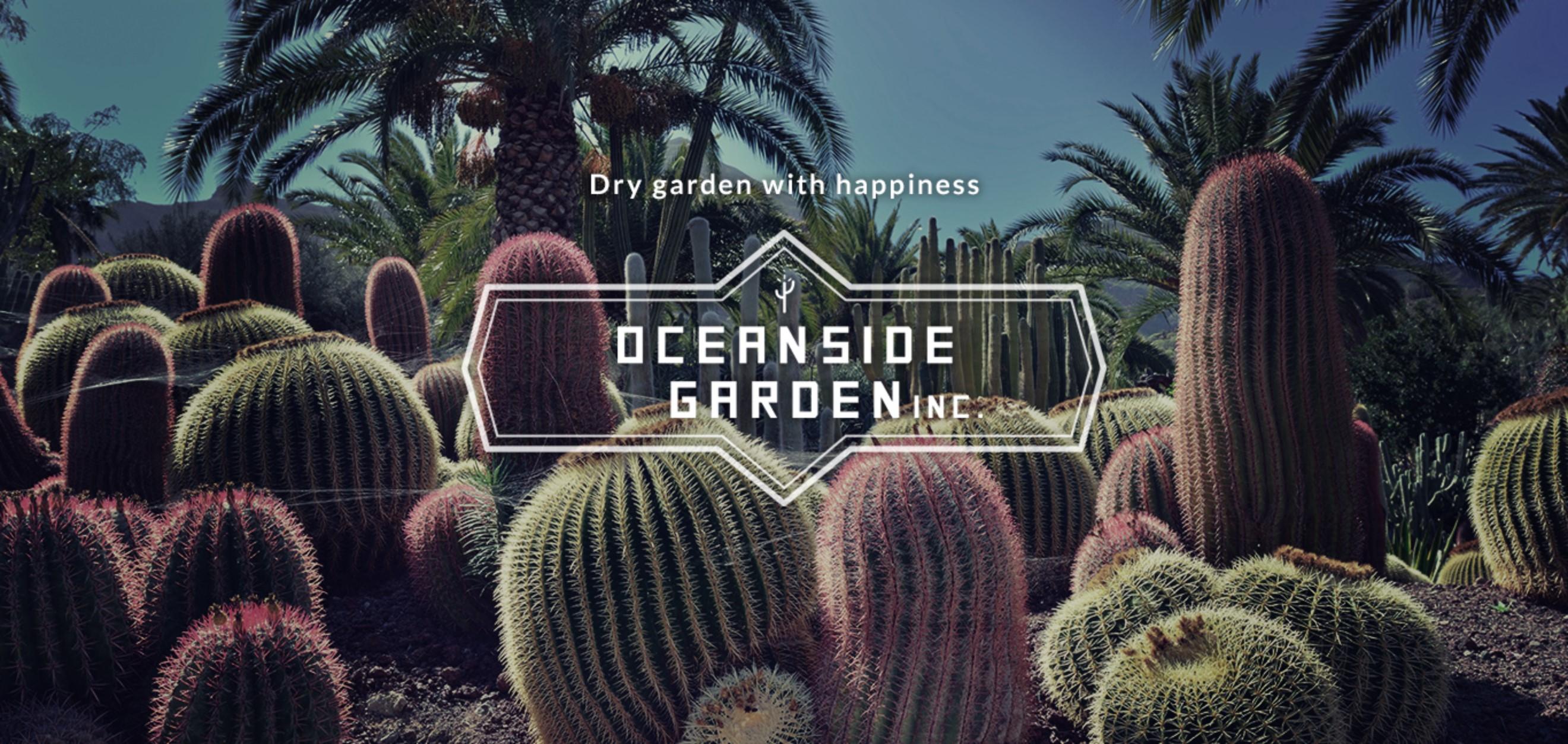 ドライガーデン・カリフォルニアスタイルの植木販売|サボテン・ユッカ・アガベ・ヤシの木等シンボルツリーはオーシャンサイドガーデンへ