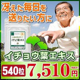 イチョウ葉エキス お徳用540粒(約9ヶ月分)