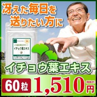 【お試し サプリ】★イチョウ葉エキス 60粒(約1ヶ月分)