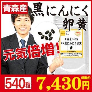 青森産100%発酵黒ニンニク卵黄 お徳用540粒(約9ヶ月分)