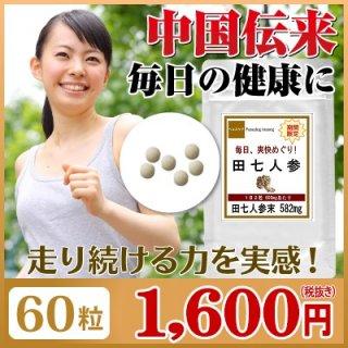 毎日の健康に! 田七人参 (でんしちにんじん) 60粒(約1ヶ月分) サプリ サプリメント