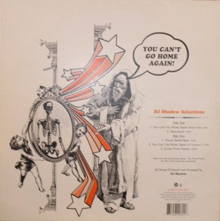 DJ SHADOW / YOU CAN'T GO HOME AGAIN (USED 12INCH)