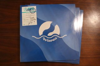 YOGEE NEW WAVES / WAVES (新品2LP)