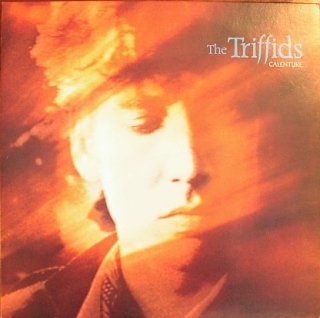 THE TRIFFIDS / CALENTURE