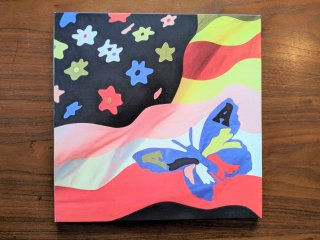 THE AVALANCHES / WILDFLOWER (USED 2LP)