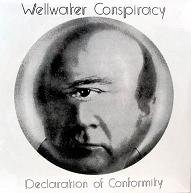 WELLWATER CONSPIRACY/Declaration Of Conformity(USED LP)