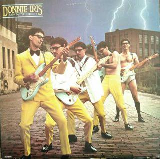 DONNIE IRIS / BACK ON THE STREETS (USED 12INCH)