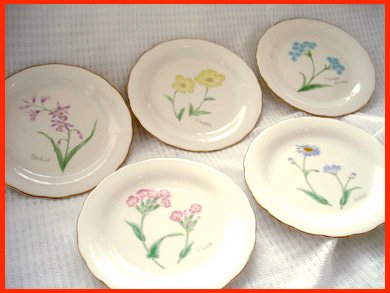 ☆A&E(アダム&イブ) TACHIKICHI お洒落な花柄プレート皿 5枚セット